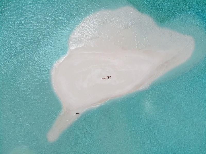 Cocoon Maldives турагентство Украина